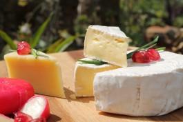 В Калининградскую область не пустили почти пять тонн сыра из Московской области