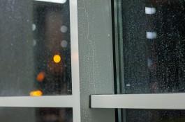 На выходных в Калининградской области ожидается потепление до +7°C и осадки