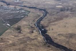 США впервые использовали сразу два беспилотника для разведки у границ Калининградской области