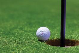 Инвестор рассчитывает приступить к строительству гольф-клуба под Светлогорском в 2019 году