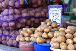 Областной Минэк: Рост цен на продукты в 2016 году составит 7%