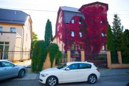 «В ярко-красном плюще»: как преобразились дома Калининграда осенью