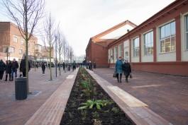 Предприниматели с Центрального рынка попросили оставить проход к павильонам на улице Баранова на время реконструкции