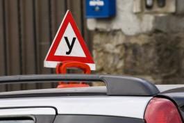 Прокуратура нашла нарушения в работе пяти автошкол Калининграда