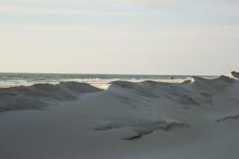 Литовцы используют новые технологии для создания пляжей в Ниде и Юодкранте