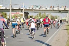 Из-за велопробега «Тур-де-Кранц» перекроют старую дорогу в Зеленоградск