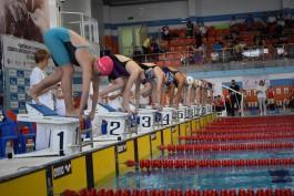 Калининградские пловцы выиграли 12 медалей первенства СЗФО