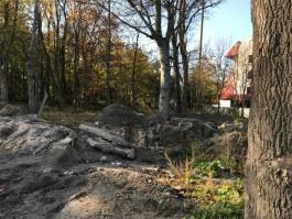 Генне назвал «стройкобыдлоадом» зелёную зону в центре Зеленоградска