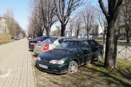 «Клумбы, шины или штраф»: как в Калининграде борются со стихийными парковками