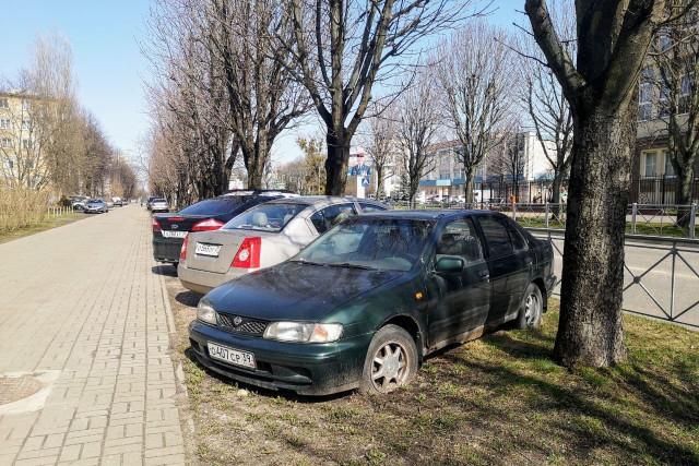 Россияне рассказали о  ежемесячных тратах на продукты