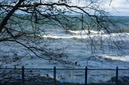 Днём в понедельник в регионе прогнозируют порывы ветра до 17 м/с