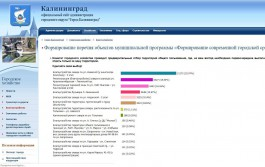 «Балтрайоновских хакеров» заподозрили в накрутке голосов за сквер для благоустройства в Калининграде
