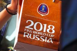 Идентификационные карты болельщиков ЧМ-2018 начнут выдавать в ноябре