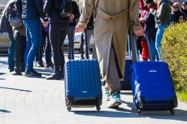 Популярность Калининграда среди туристов за год выросла на 40%