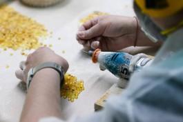 Калининградское правительство расширило список отраслей, которым разрешено работать в апреле