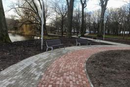 В Южном парке Калининграда предложили восстановить довоенные теннисные корты