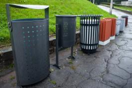 «От пингвина до ведра»: какие мусорки хотят убрать с улиц Калининграда
