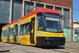 «Красавчик пропал»: Мухомор рассказал, почему трамвай PESA перестал ходить по улицам Калининграда