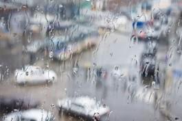 Синоптики обещают дождливую рабочую неделю в Калининградской области