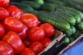 Калининградстат: За месяц в регионе подорожали помидоры, огурцы и яйца