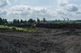 Калининградская область заняла 64-е место в экологическом рейтинге субъектов РФ