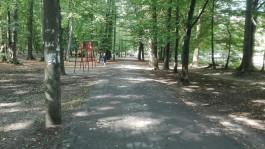 Когда кто-нибудь обратит внимание на парк на Каштановой аллее?
