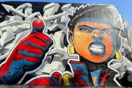 В центре Калининграда уличные художники расписали стену граффити