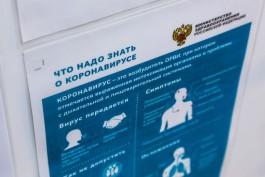 За сутки в Калининградской области зарегистрировали 38 случаев коронавируса