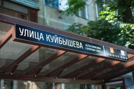 Власти выделяют 2,9 млн рублей на высадку каштанов и лип на Куйбышева в Калининграде