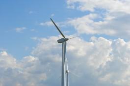 Прокуратура: Новый ветропарк в Ушаково построен с нарушениями