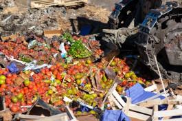 В Калининградской области уничтожили 196 кг турецких помидоров