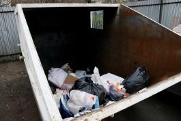 На улице Воздушной в Калининграде на мусорке обнаружили опасные лампы