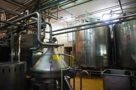 Инвестор вложит в новое предприятие по переработке молока в регионе около 3 млрд рублей