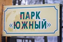 В Южном парке Калининграда хотят построить вантовый мост с подсветкой