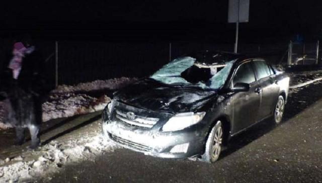 Автомобилист изКалининграда насмерть сбил лося вПольше