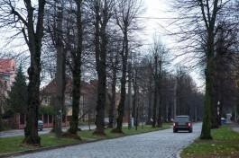 В Калининградской области ожидаются тёплые и дождливые выходные