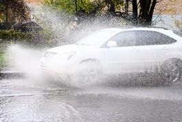 В Калининградской области ожидается ветреная и дождливая рабочая неделя