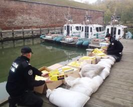 В польском порту задержали яхту из Калининграда с рекордной контрабандой янтаря