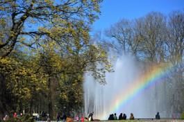 В калининградском зоопарке хотят по архивным фото восстановить «рисунок» фонтана