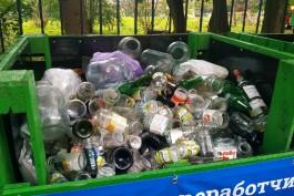 За выходные в Калининграде собрали больше семи кубов стеклянных отходов