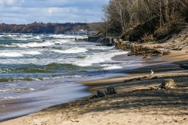 «Коряги и бетон»: как выглядит пляж между Отрадным и Светлогорском, который хотят расширить до 70 метров