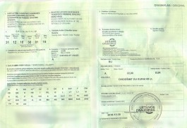 На границе с Польшей задержали двоих калининградцев с поддельными страховками