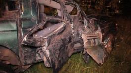 Под Светлым «Митсубиси» вылетел с дороги: погиб человек