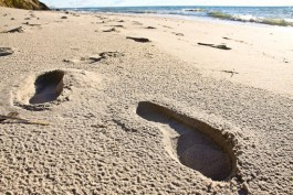 В Гдыне эвакуировали отдыхающих на пляже из-за масляных пятен в море