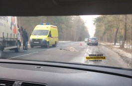 На трассе Калининград — Балтийск насмерть сбили пешехода
