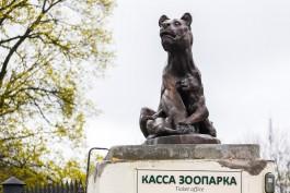 Калининградский зоопарк переходит на зимний режим работы