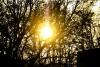 Синоптики обещают в Калининградской области тёплые выходные