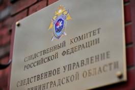 «Неизвестный бросил в воду»: в СК назвали причину гибели шестилетнего мальчика в реке в Советске