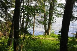 Суд потребовал снести самовольно построенный гостевой дом на берегу Виштынецкого озера