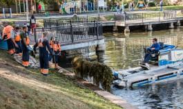 В Калининграде начали чистить озеро Поплавок на проспекте Мира